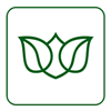 ČESKÁ SPRÁVA SOCIÁLNÍHO ZABEZPEČENÍ - logo
